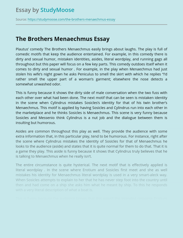 The Brothers Menaechmus