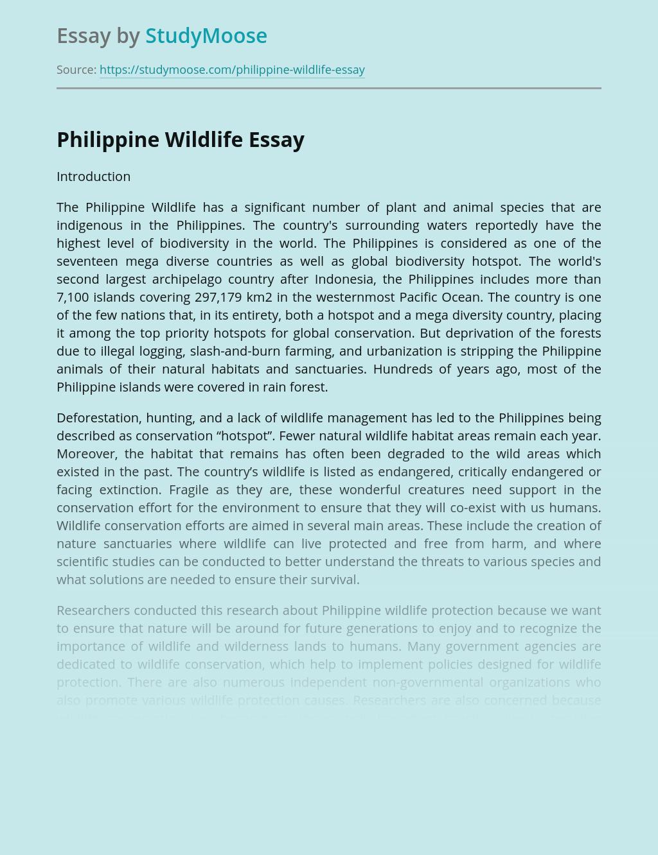 The Philippine Wildlife