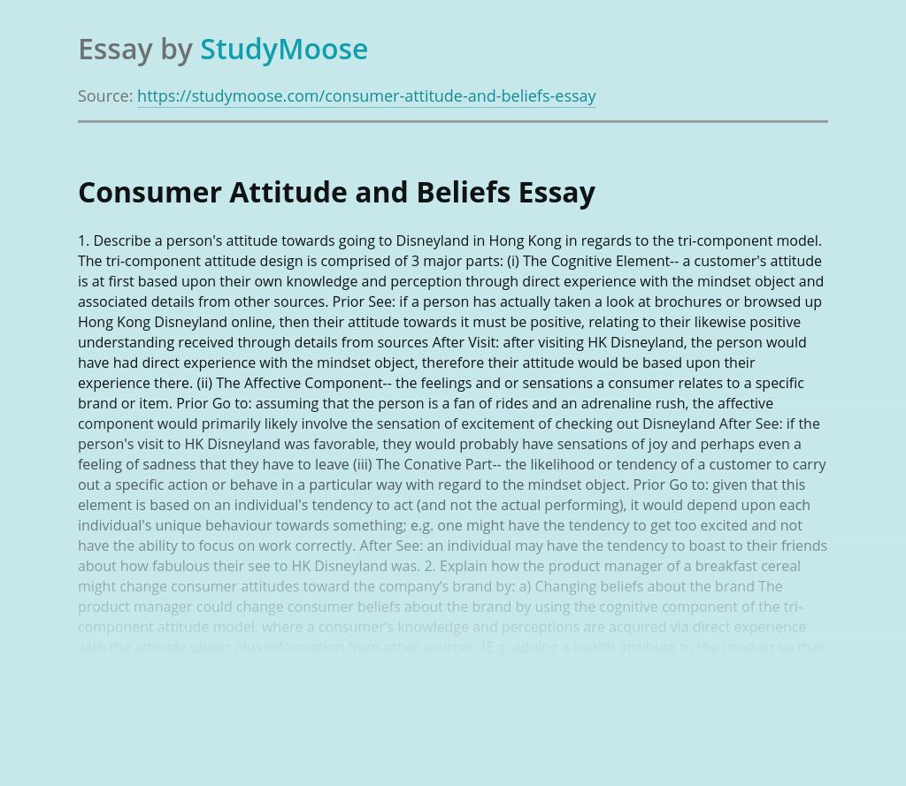 Consumer Attitude and Beliefs