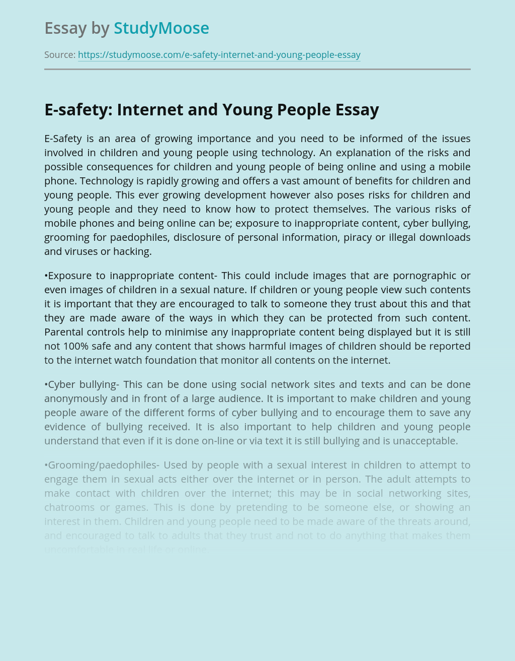 E-safety: Internet and Young People