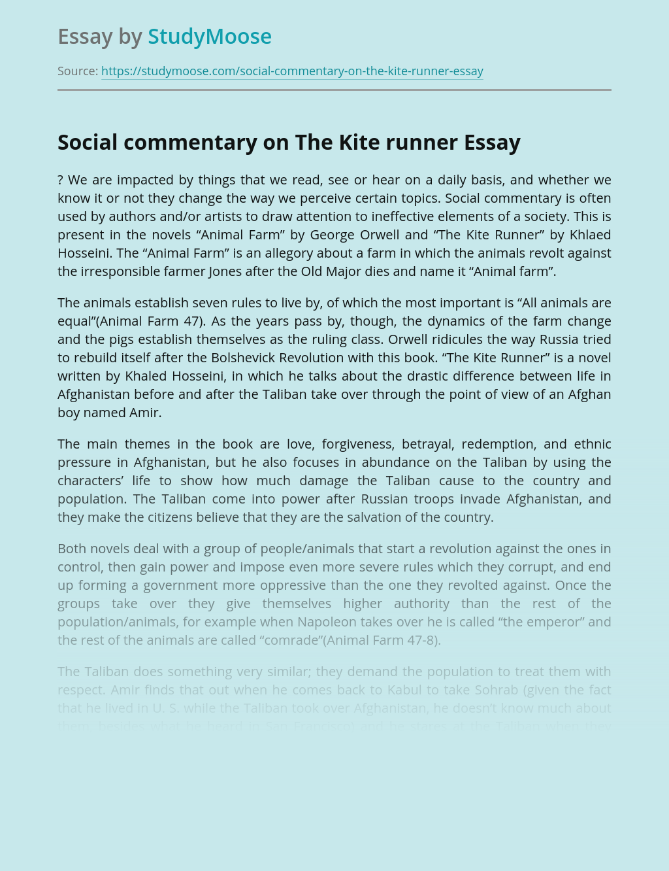 Social commentary on The Kite runner