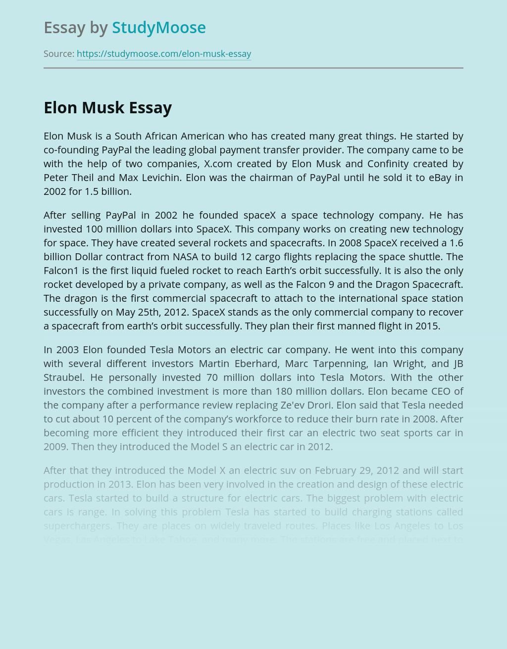 A Famous Person Elon Musk