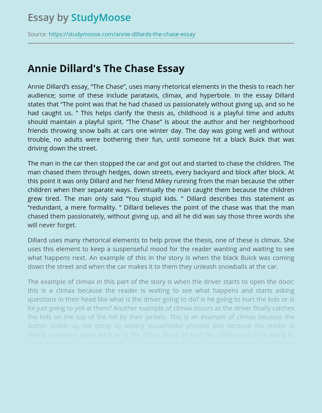 Annie Dillard's The Chase