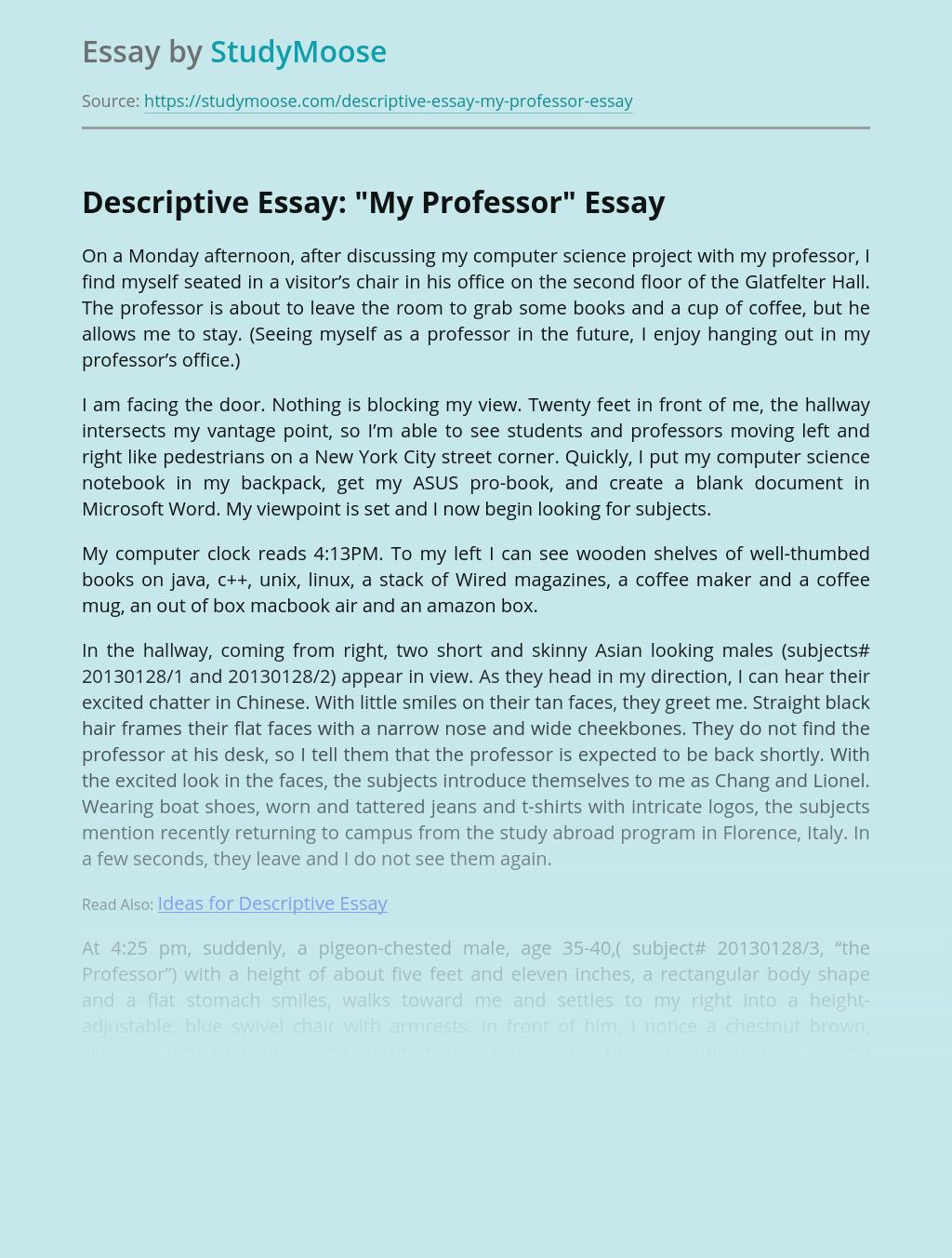 """Descriptive Essay: """"My Professor"""""""
