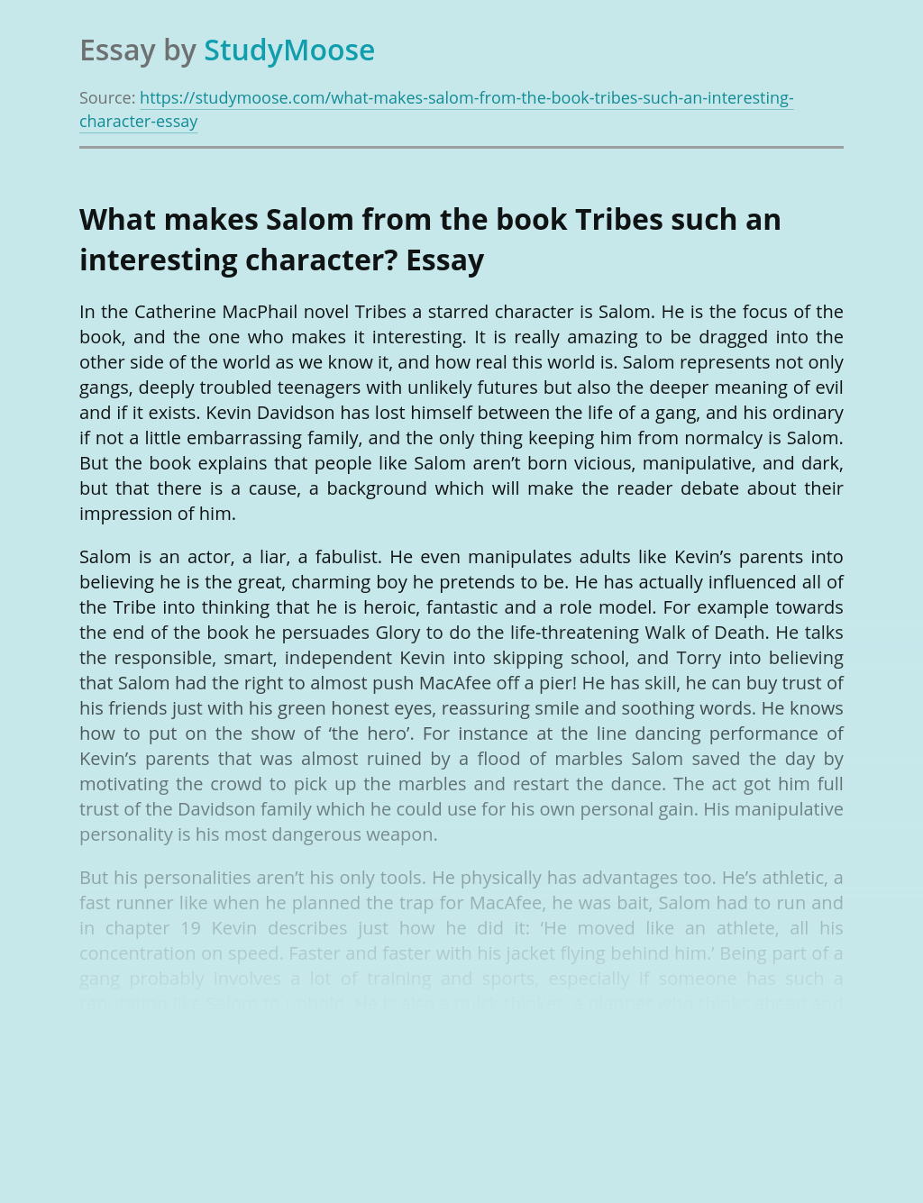 What makes Salom from the book Tribes such an interesting character?