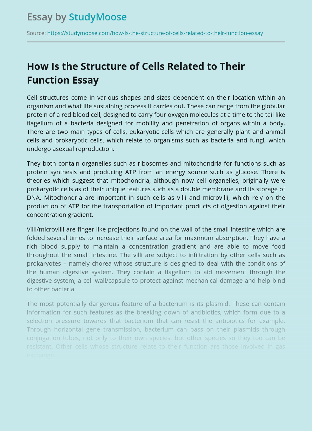 Cells Structures and Functions