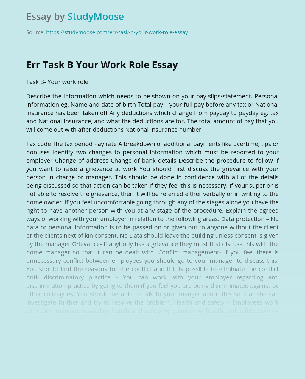 Err Task B Your Work Role