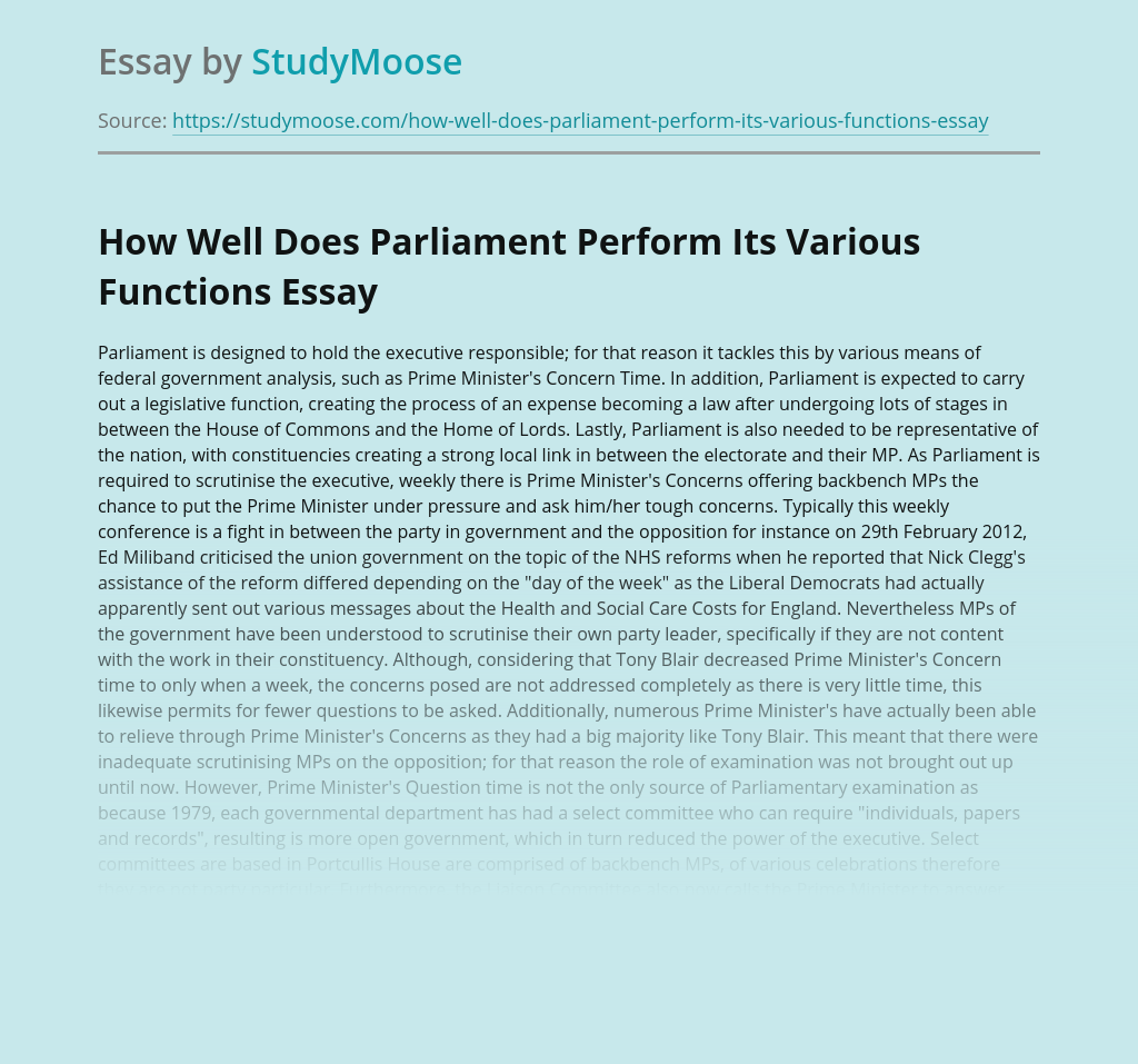How Well Does Parliament Perform Its Various Functions