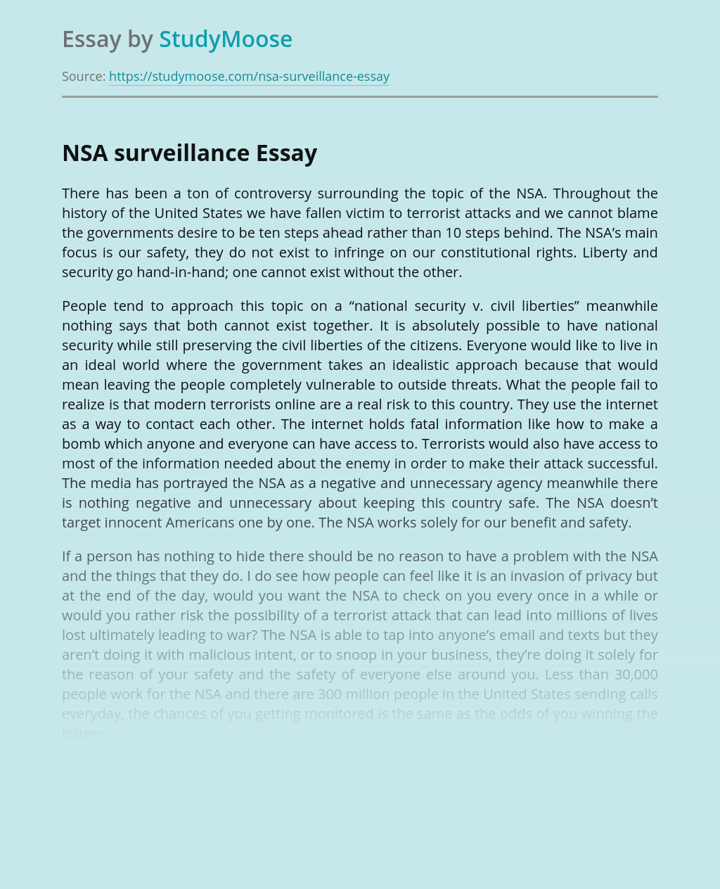 Safety and NSA Surveillance