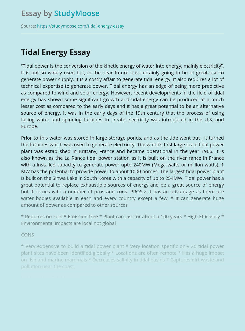 Tidal Energy as One of Alternative Energy Resources