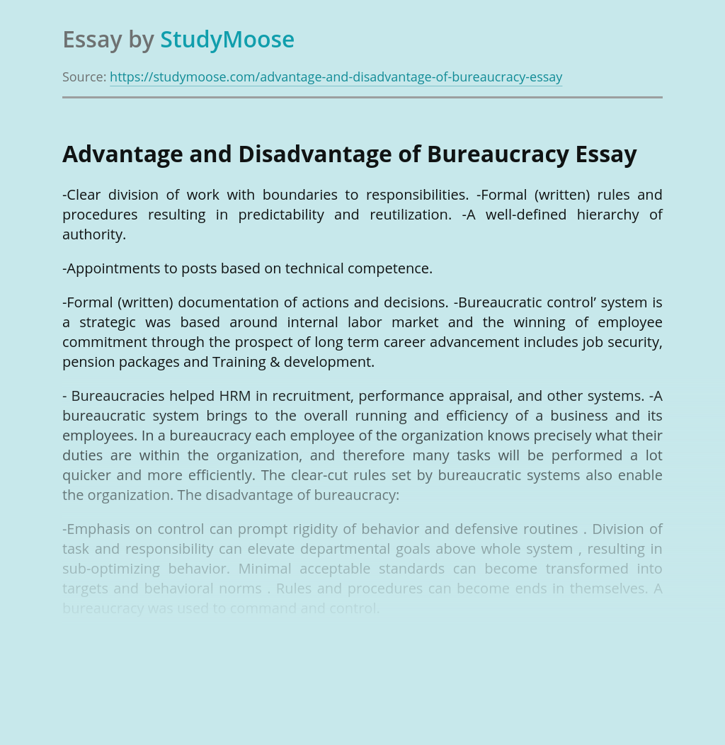 Essay on Bureaucracy - Words | Bartleby