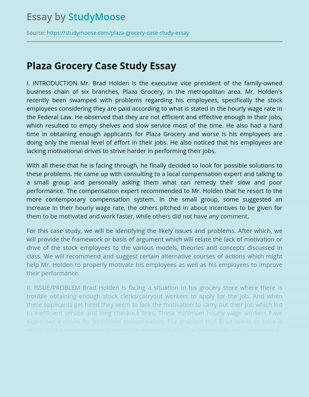 Plaza Grocery Case Study
