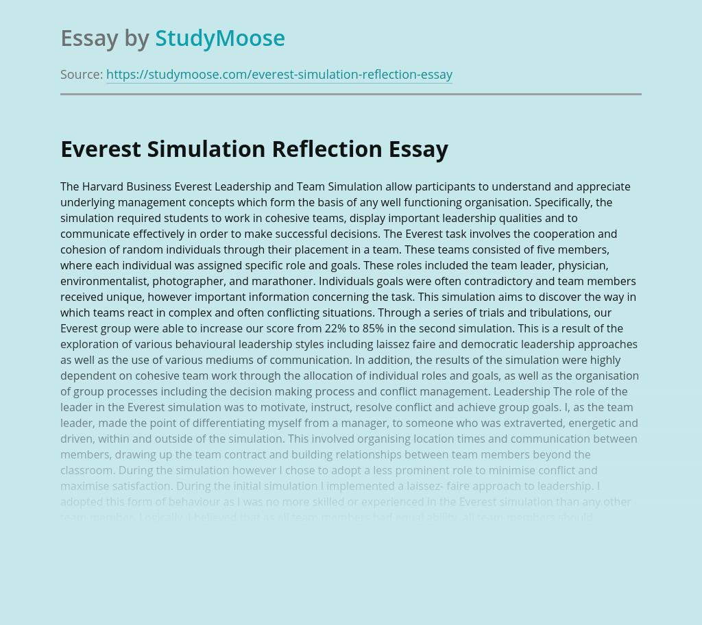 Everest Simulation Reflection