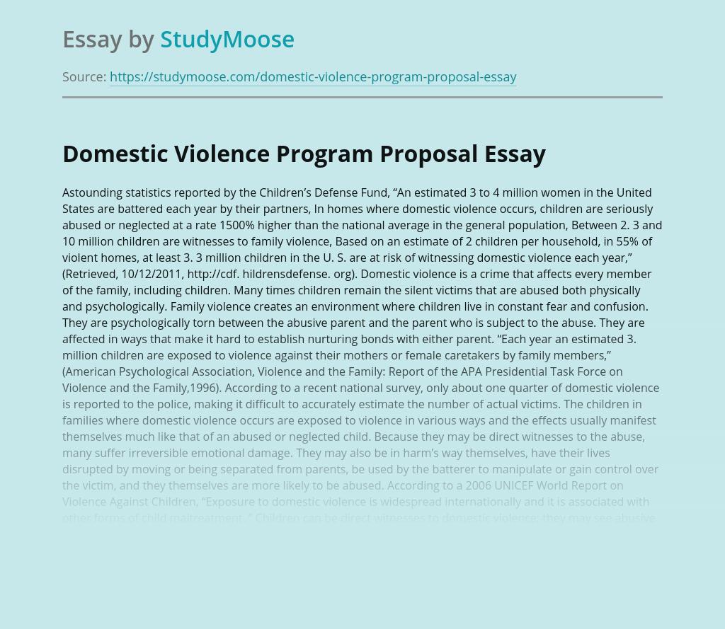 Domestic Violence Program Proposal