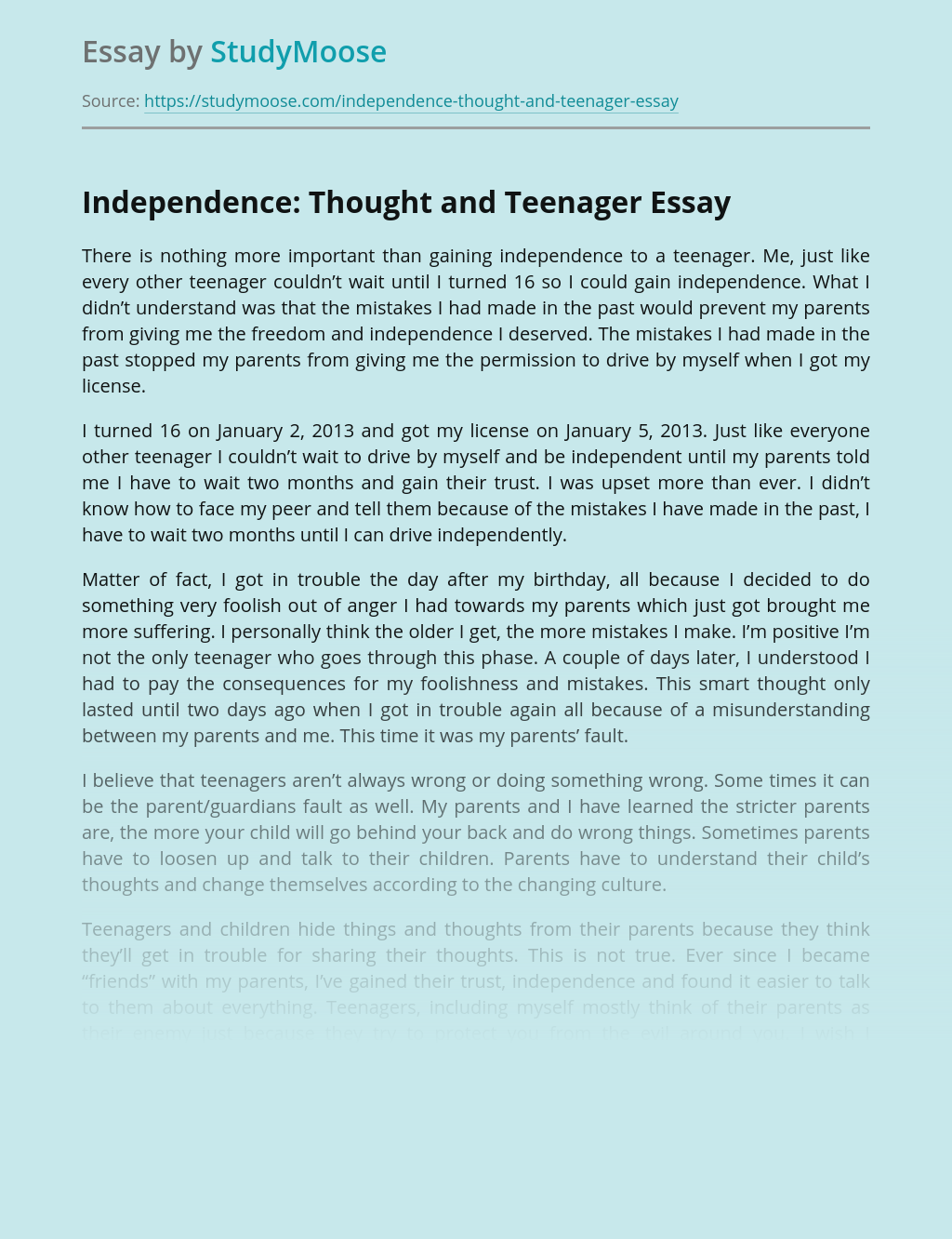 Teenager thesis essay energy crisis