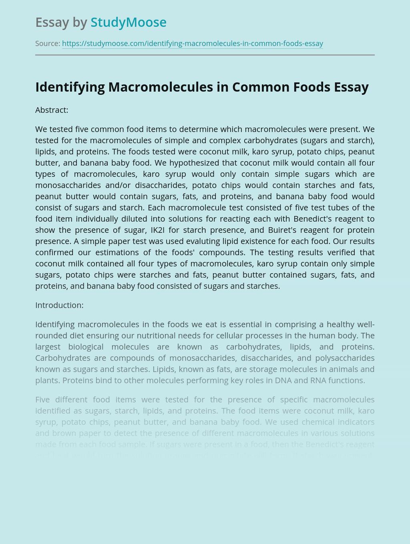 Identifying Macromolecules in Common Foods
