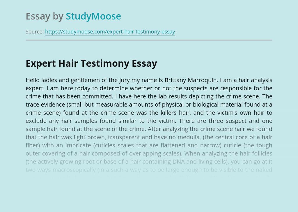 Expert Hair Testimony