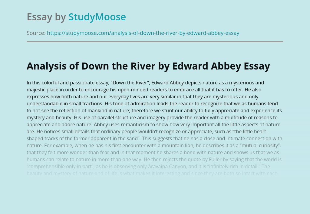 Analysis of Down the River by Edward Abbey