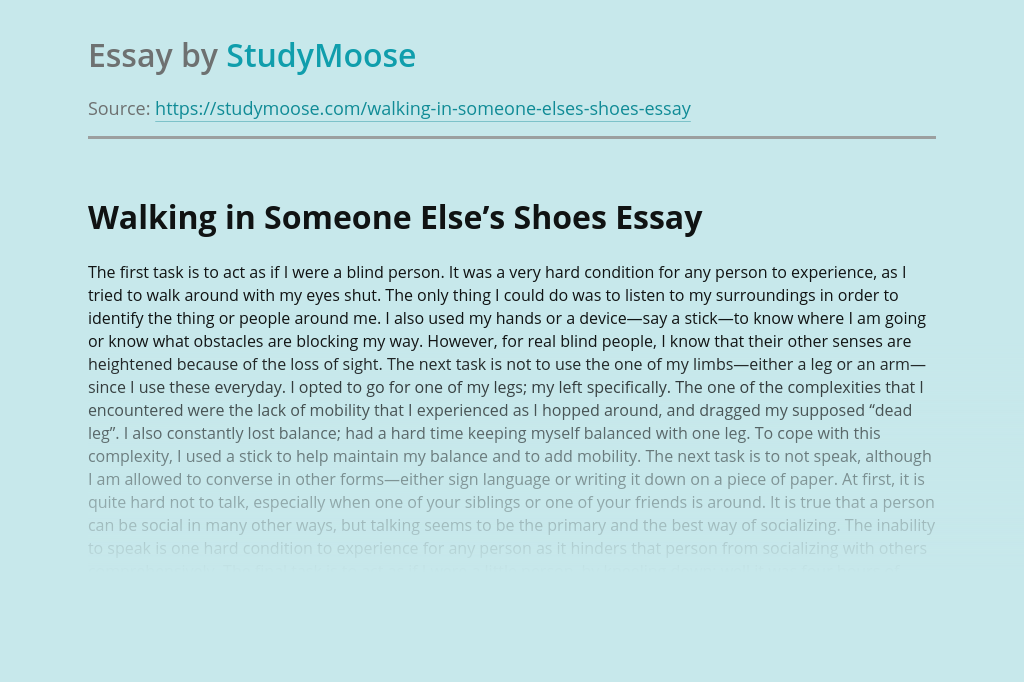Walking in Someone Else's Shoes