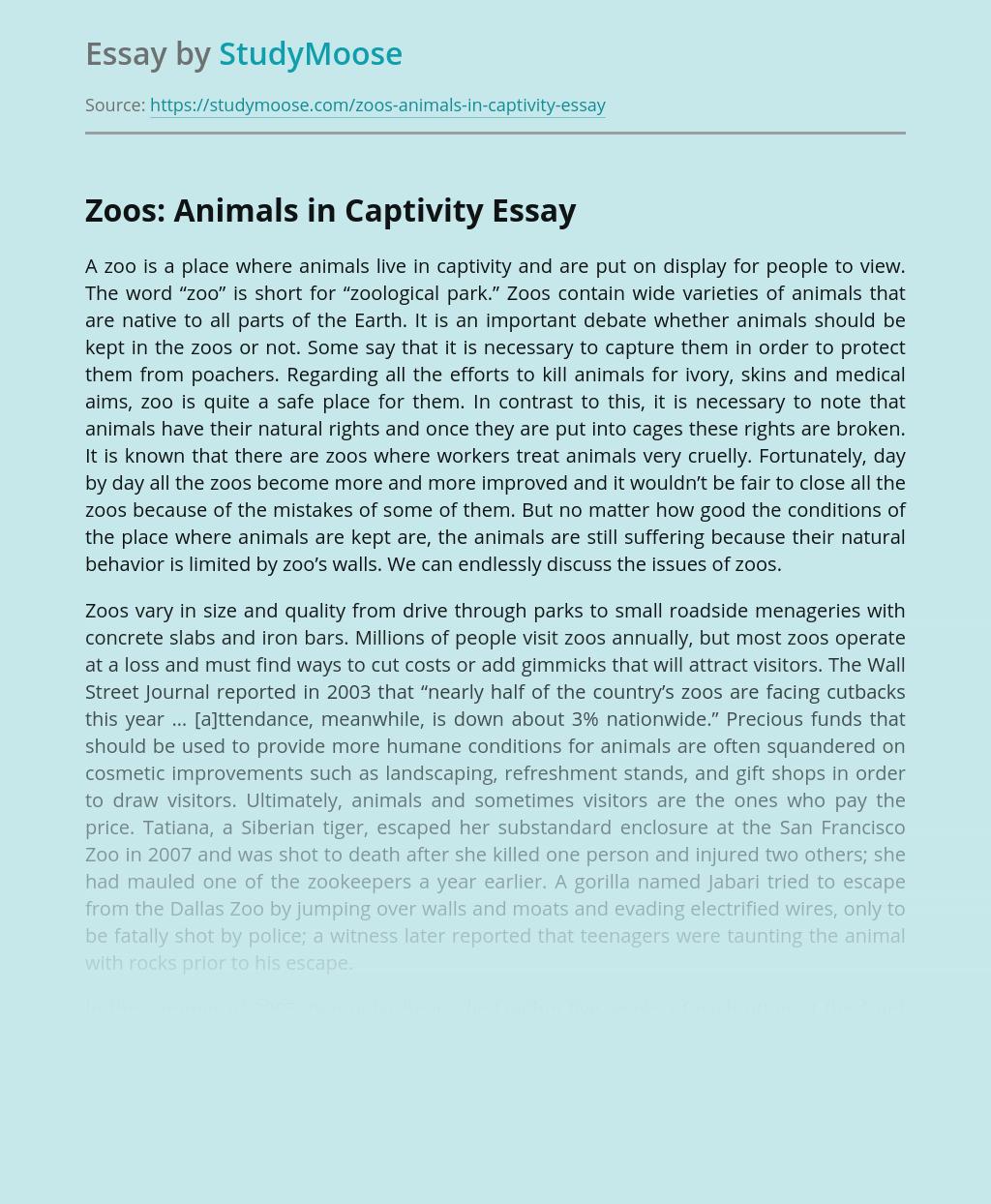 Zoos: Animals in Captivity