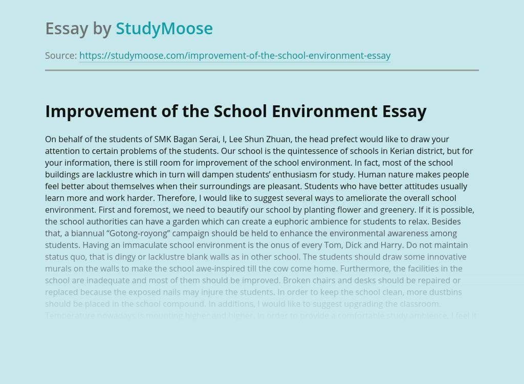 Improvement of the School Environment