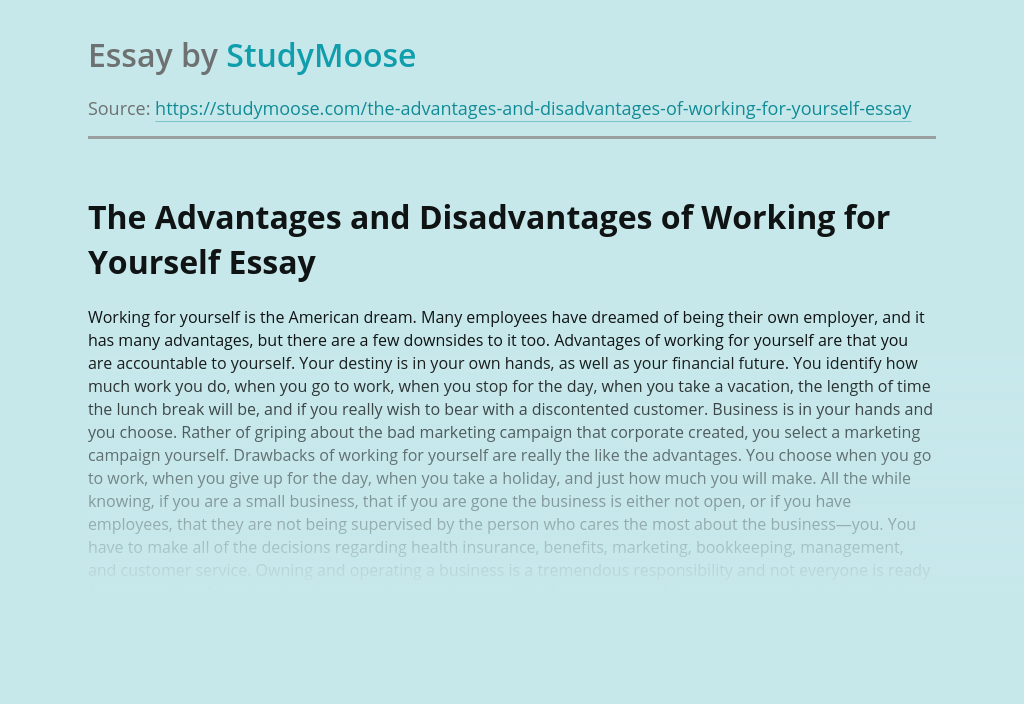 The Advantages and Disadvantages of Working for Yourself