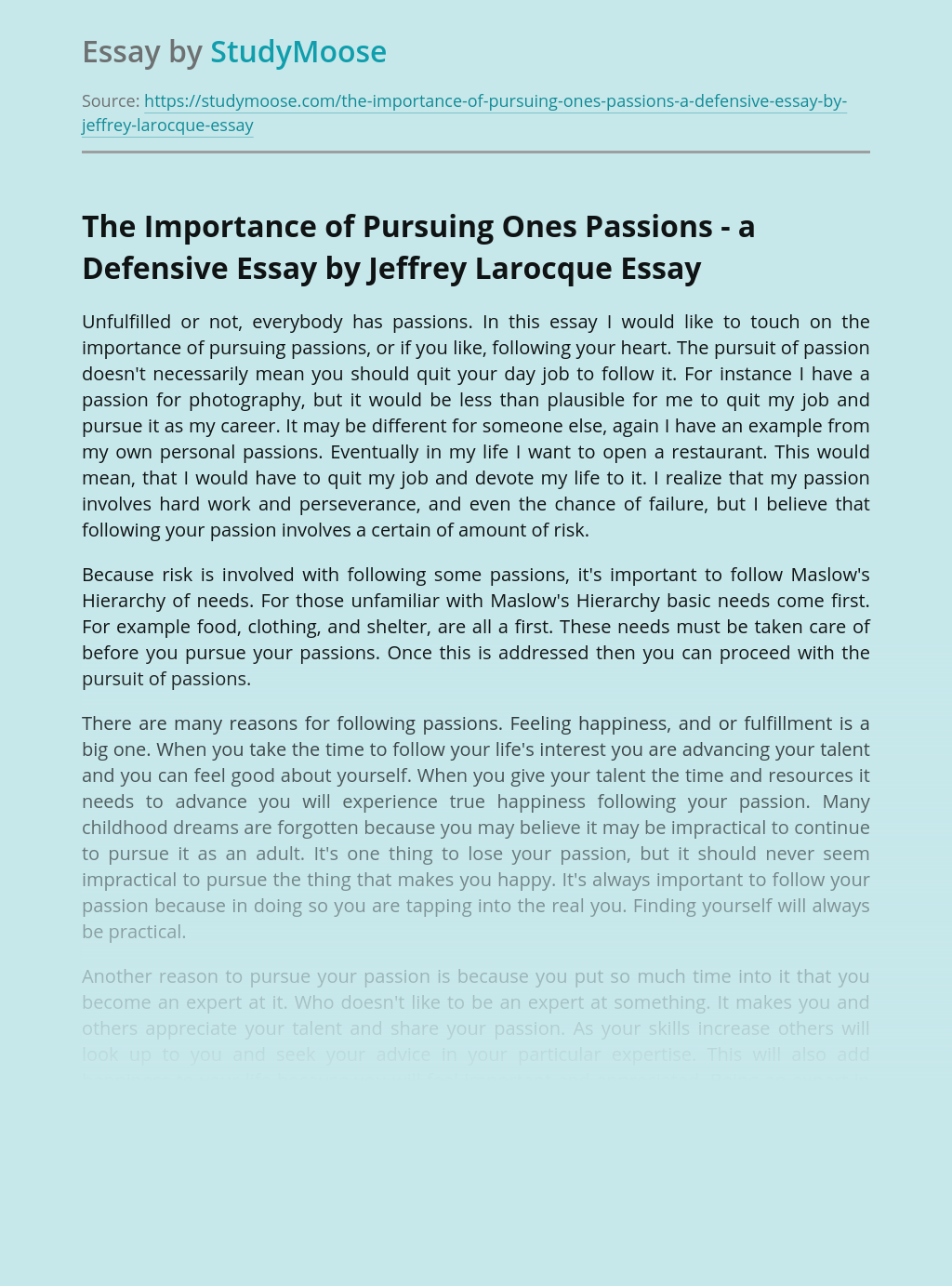 The Importance of Pursuing Ones Passions - a Defensive Essay by Jeffrey Larocque