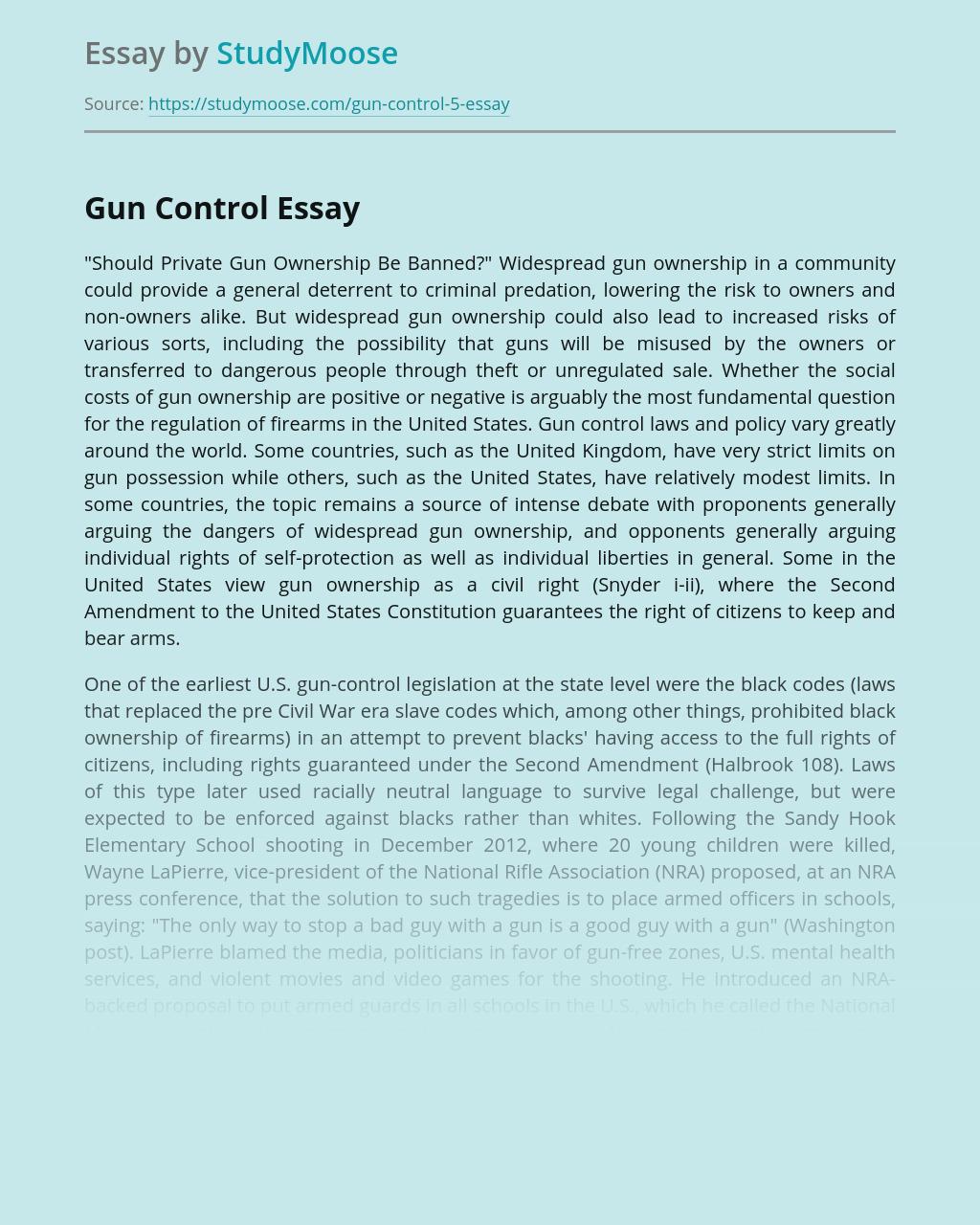 Private Gun Ownership