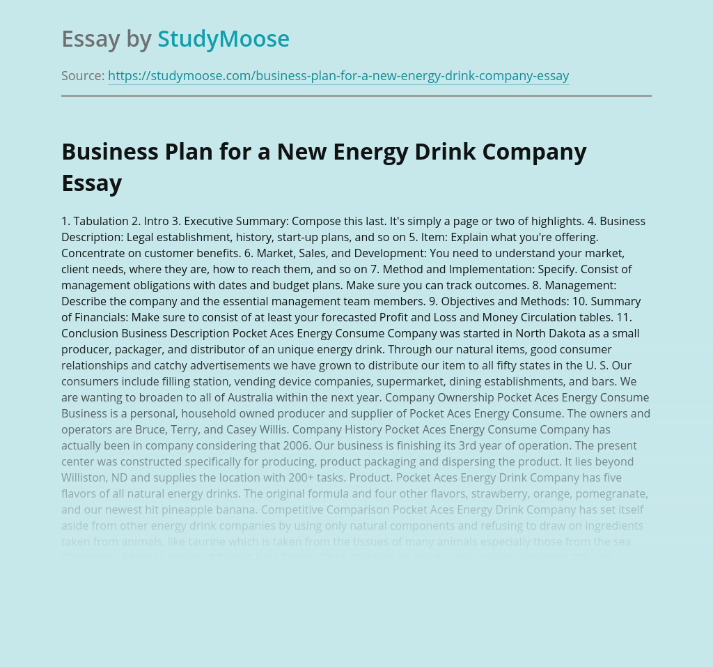 Business Plan for a New Energy Drink Company