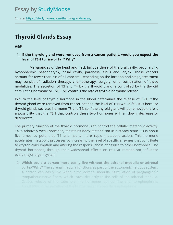 The Thyroid Glands