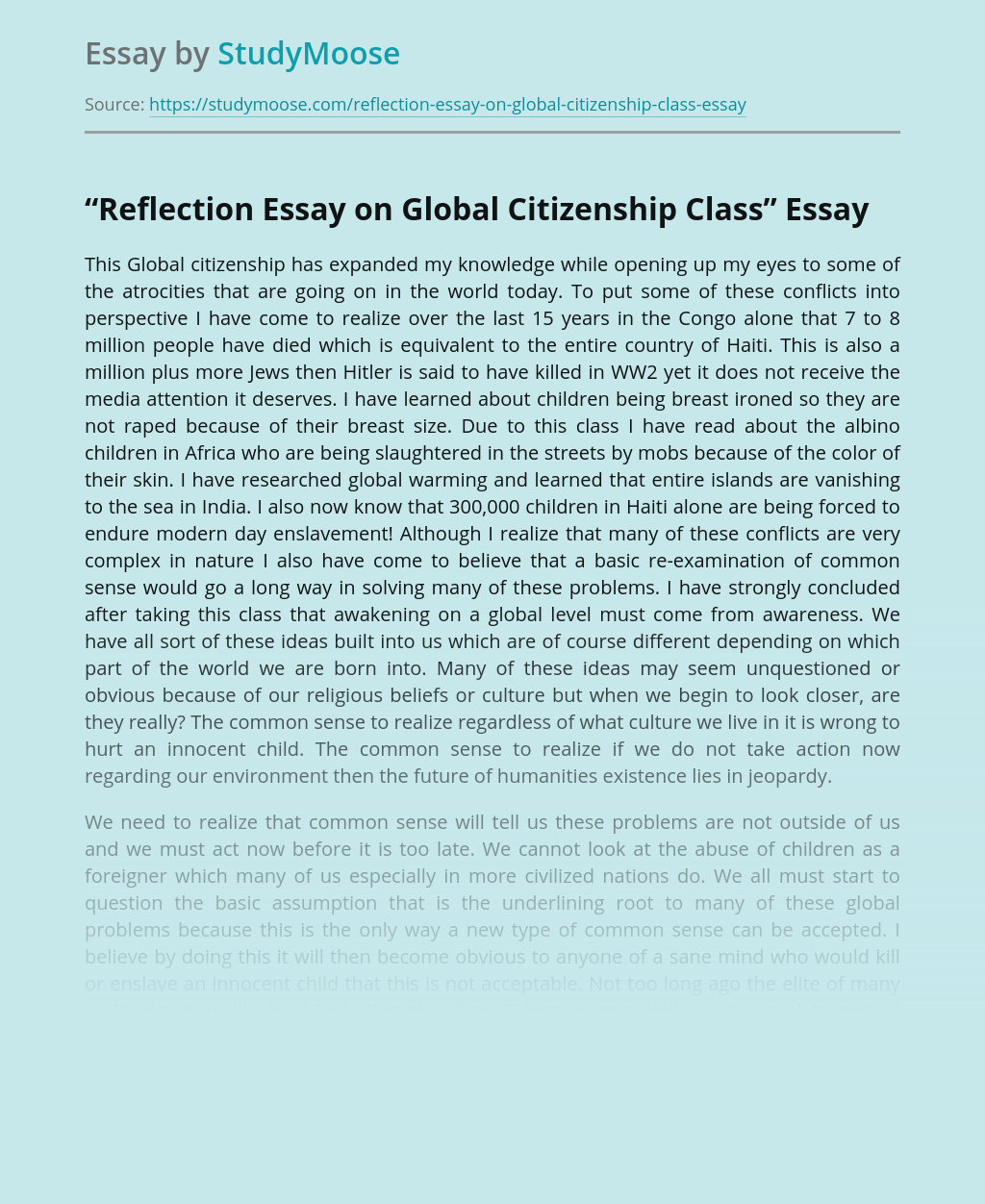 """Reflection Essay on Global Citizenship Class"""