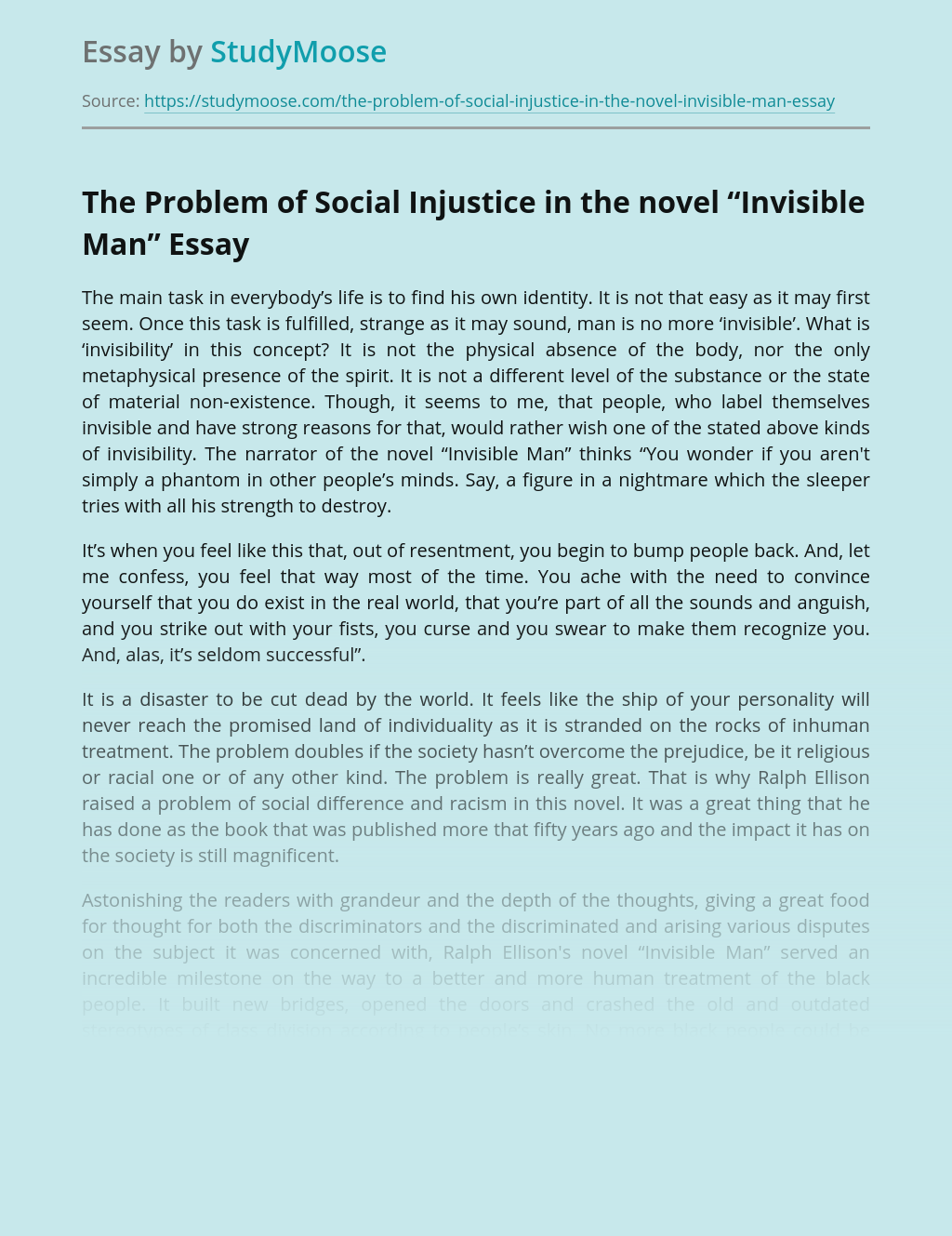 "The Problem of Social Injustice in the novel ""Invisible Man"""