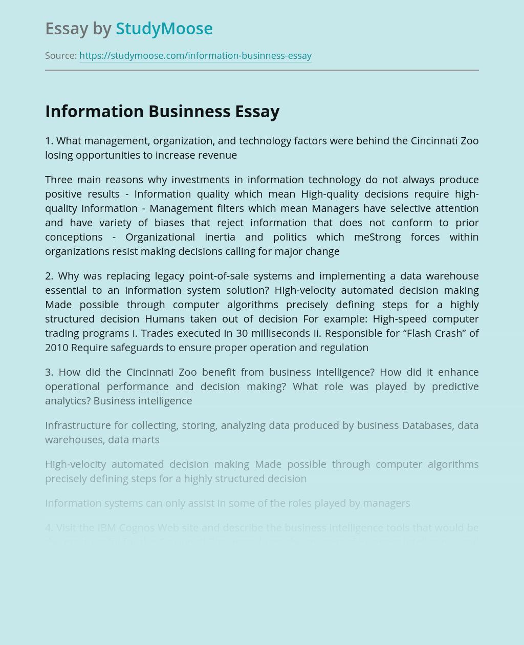 Information Businness