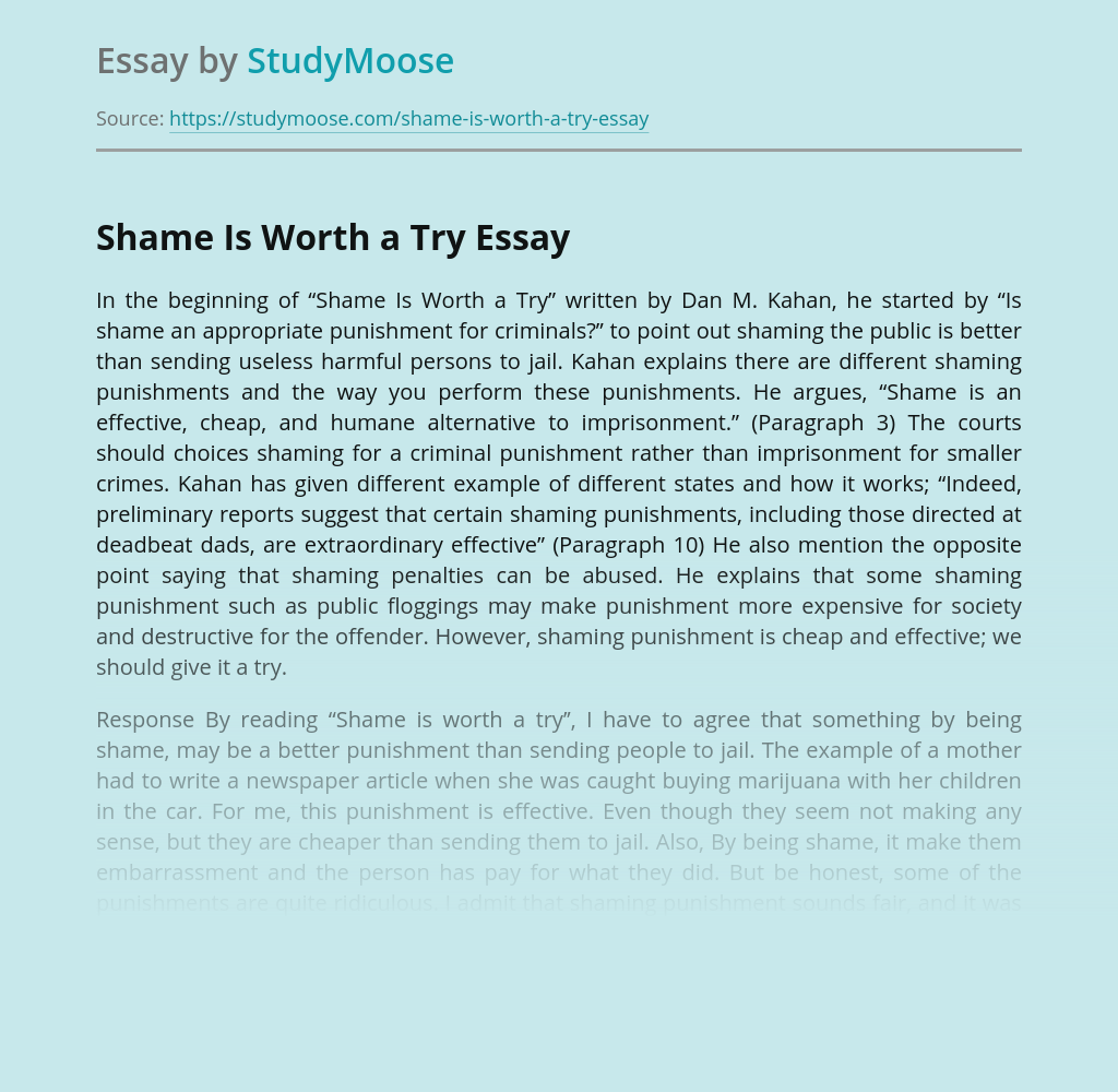 Shame Is Worth a Try Book Review
