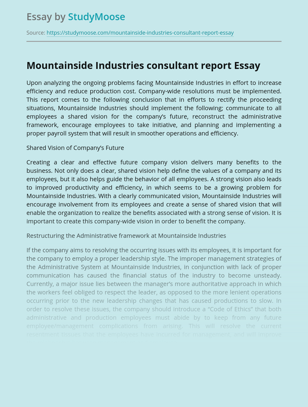 Mountainside Industries consultant report
