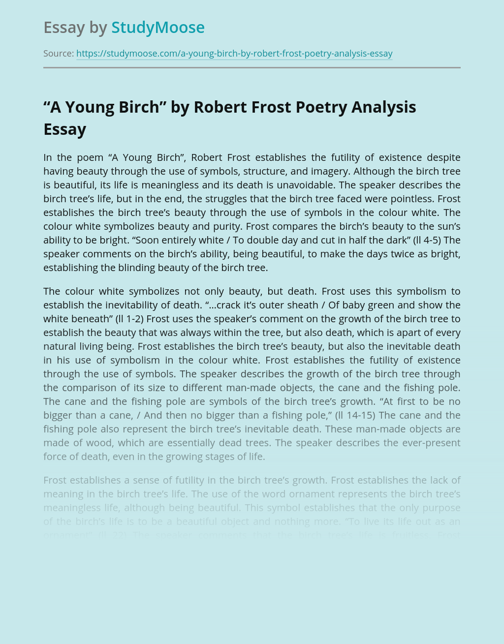 """""""A Young Birch"""" by Robert Frost Poetry Analysis"""