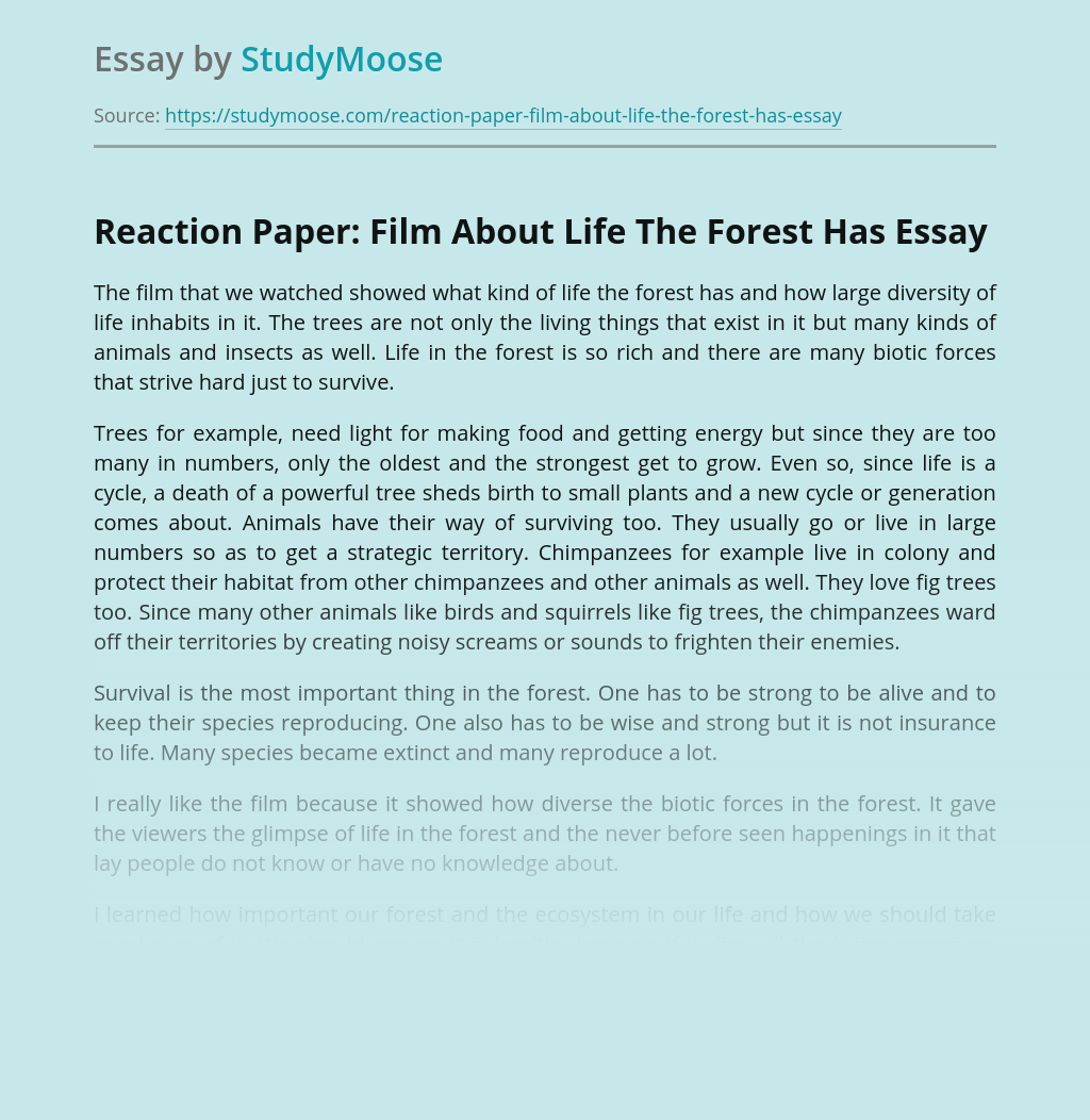 Reaction Paper: Film About Life The Forest Has