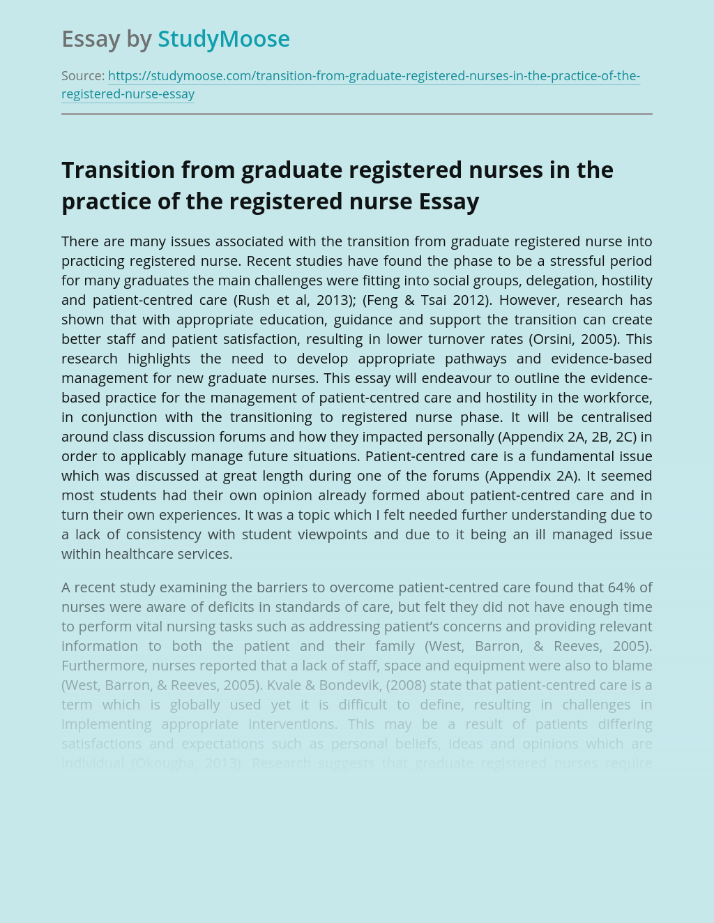 Transition from graduate registered nurses in the practice of the registered nurse