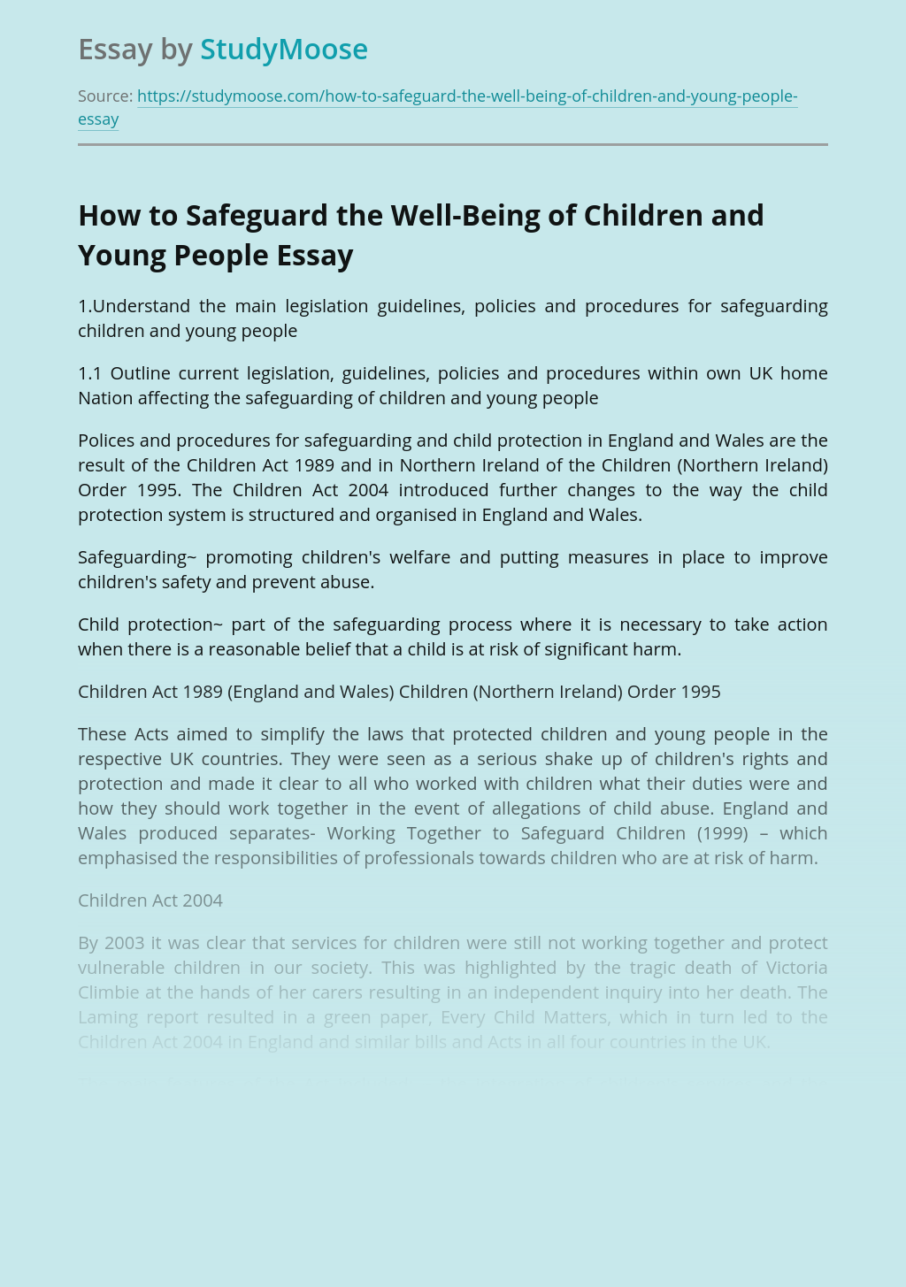 How to Safeguard the Well-Being of Children and Young People