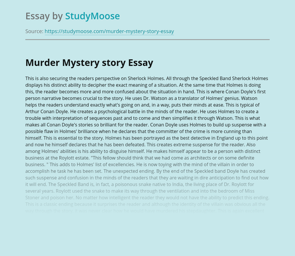 Murder Mystery story