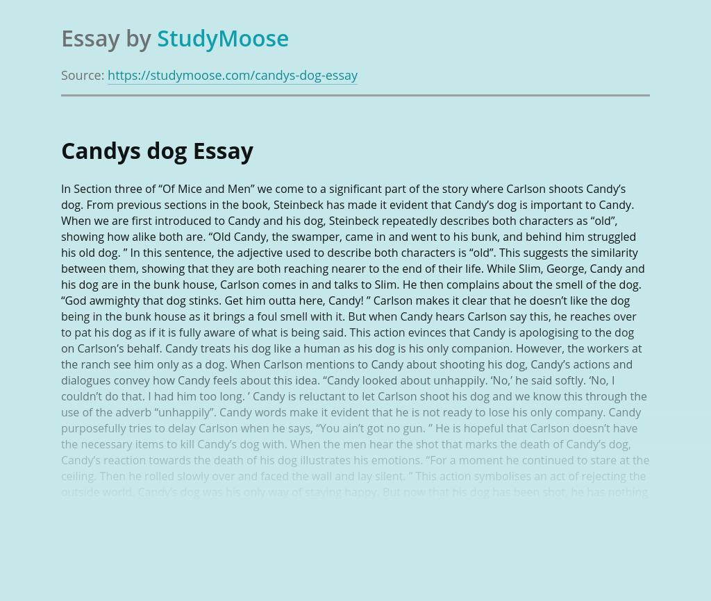 Candys dog