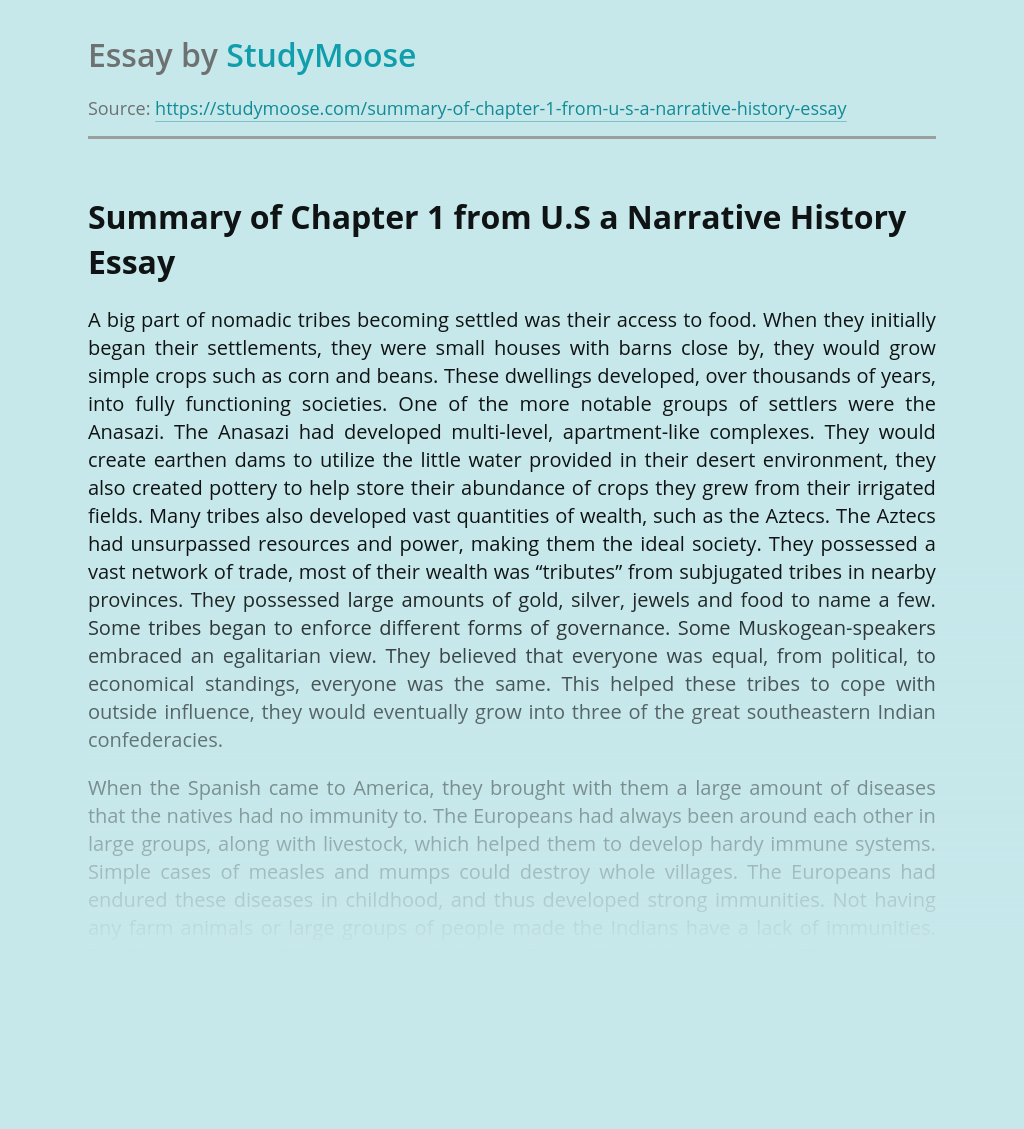 Summary of Chapter 1 from U.S a Narrative History