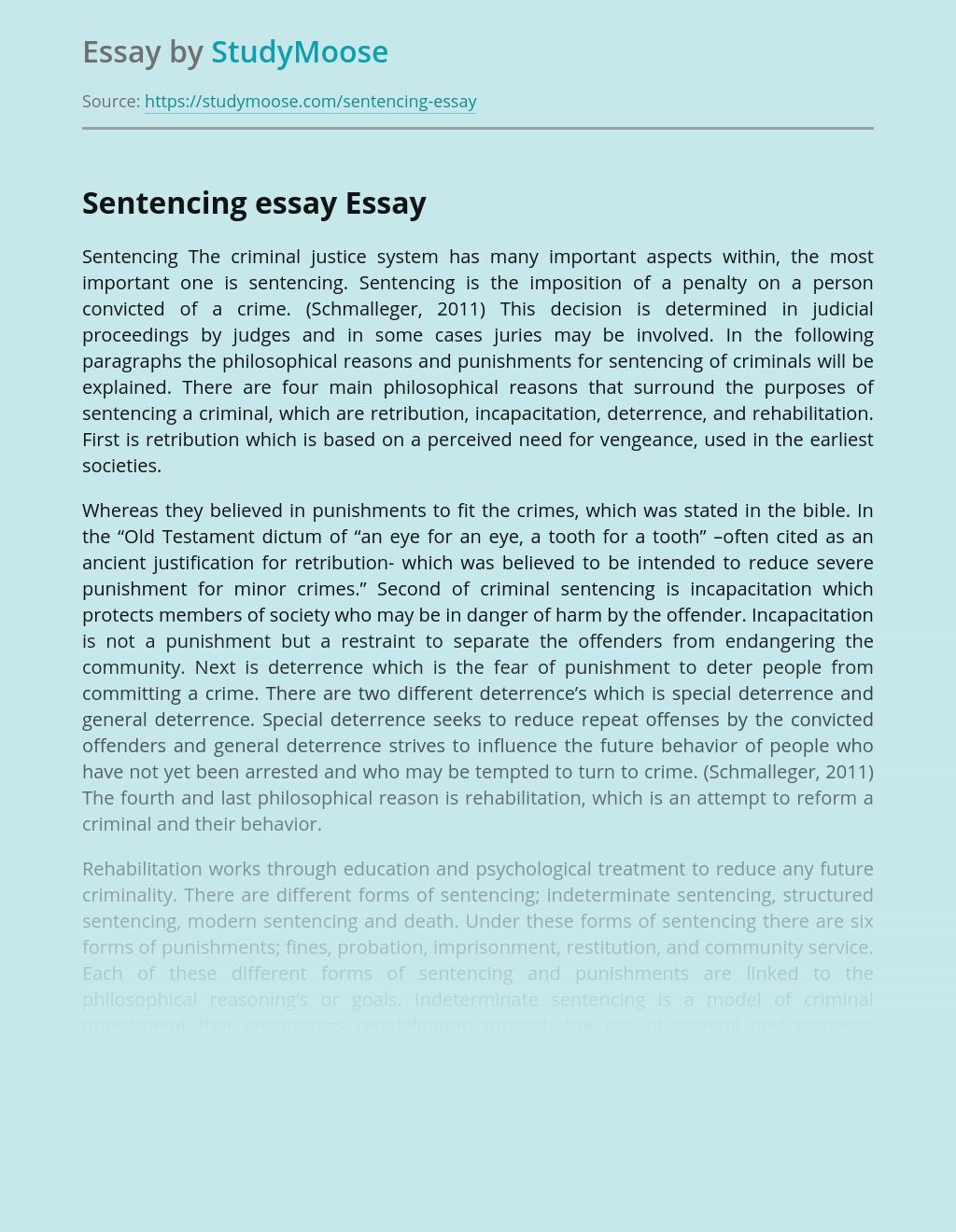 Sentencing essay