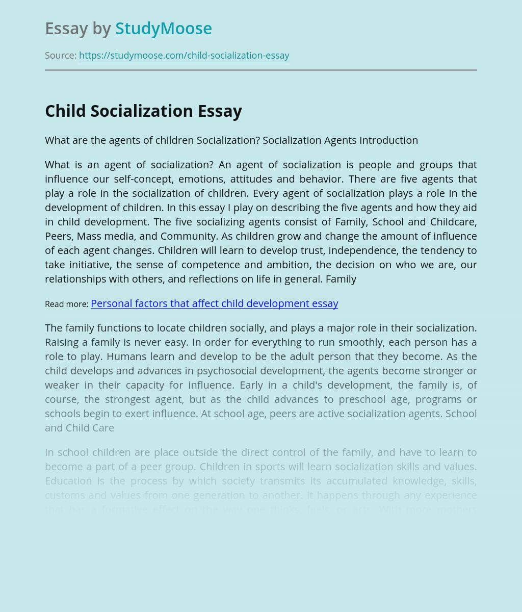 Child Socialization