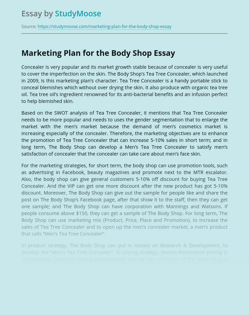 Marketing Plan for the Body Shop