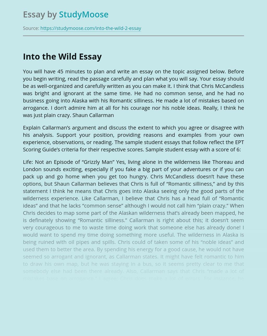 Into the Wild: Chris McCandless