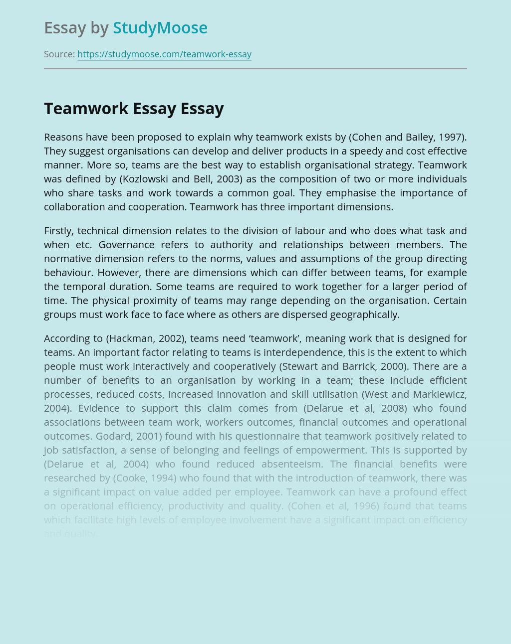 Teamwork Essay