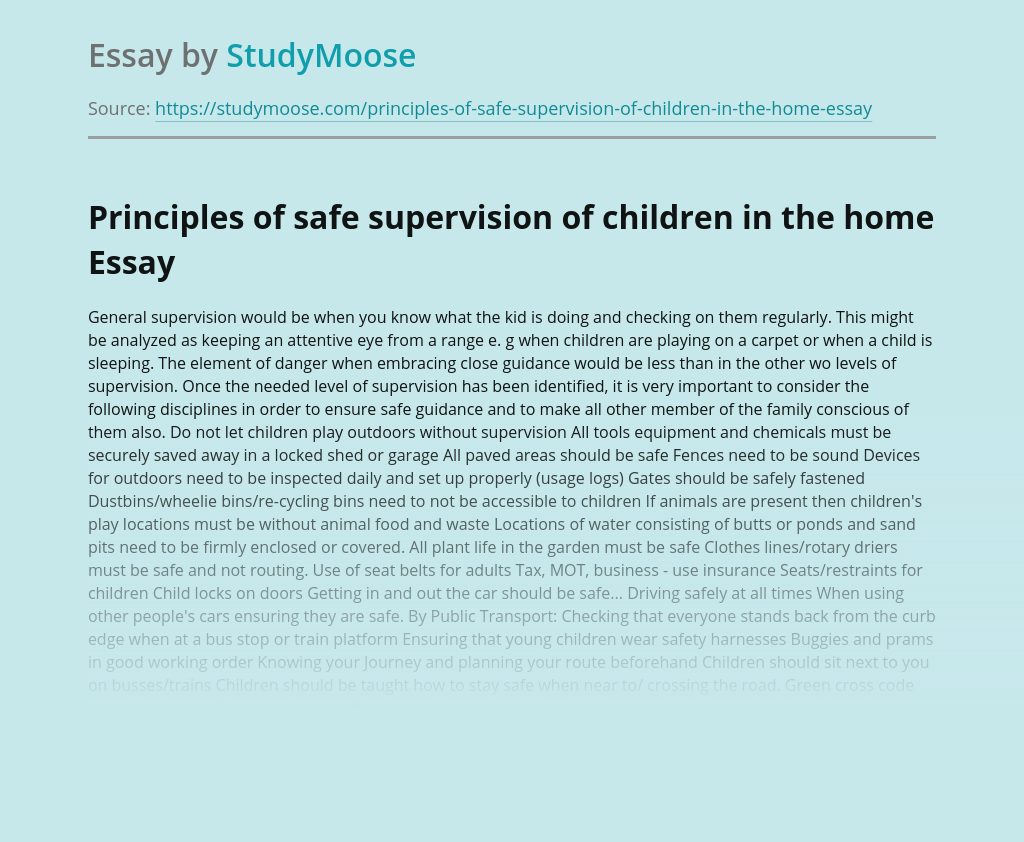 Principles of safe supervision of children in the home