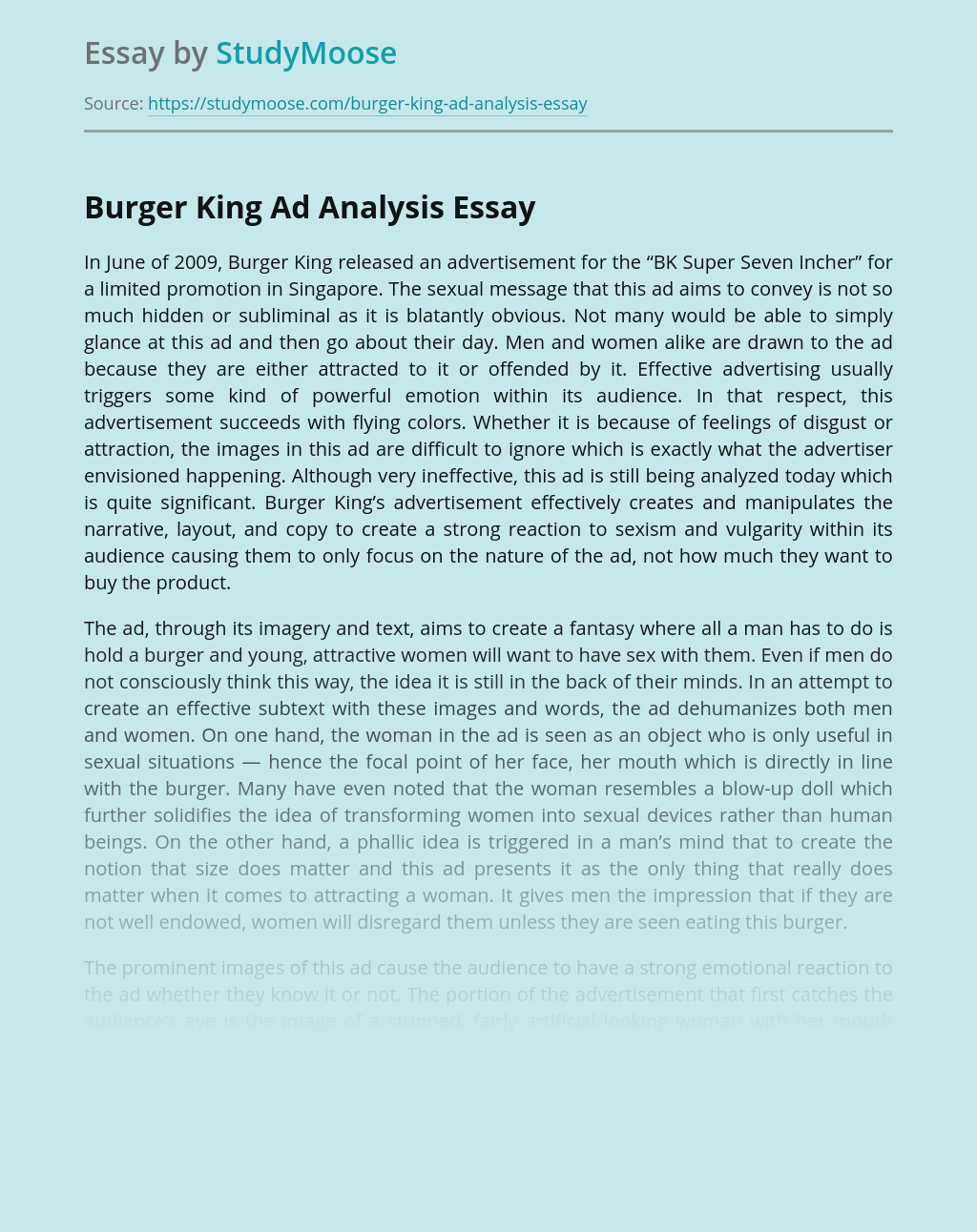 Burger King Ad Analysis