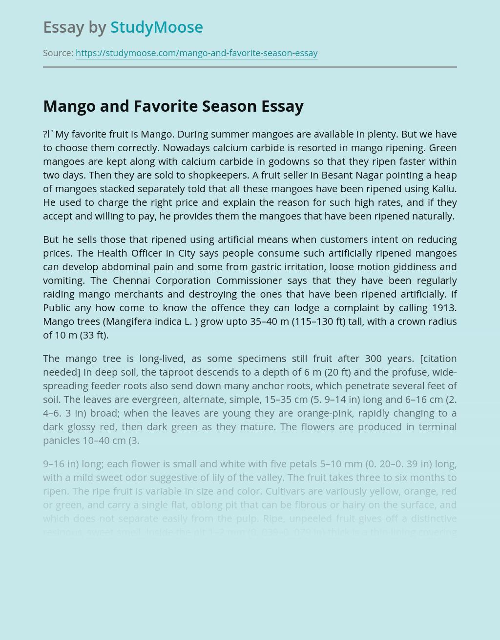 Mango and Favorite Season